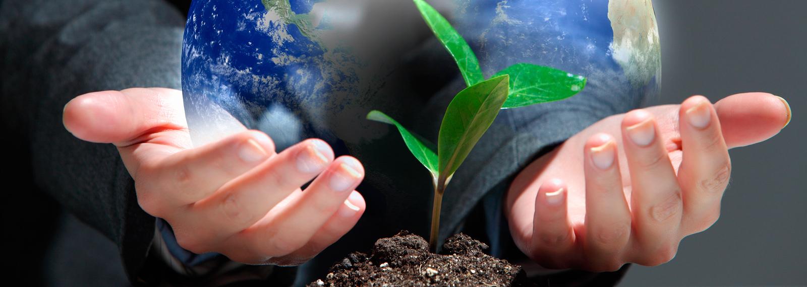 Ekologiczne folie biodegradowalne